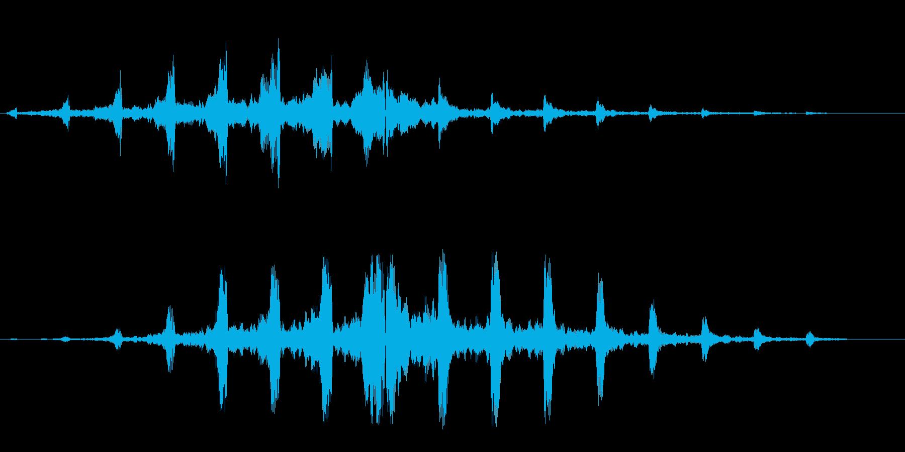シュリリ(鳴き声・回転系の音)の再生済みの波形