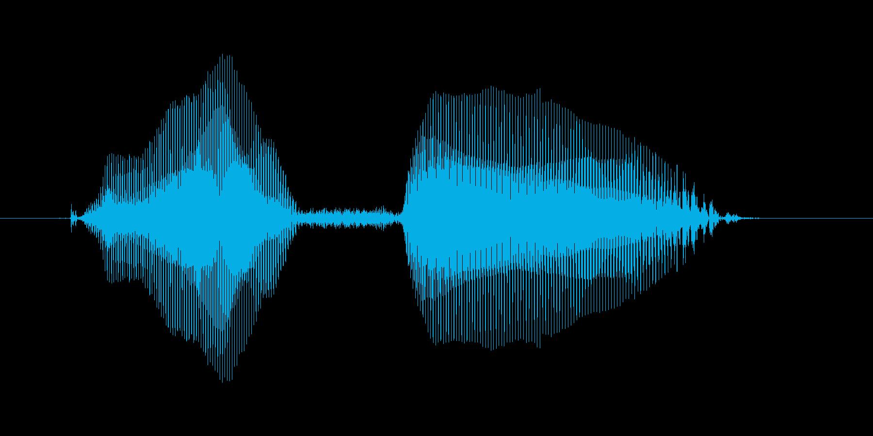 パスぅの再生済みの波形