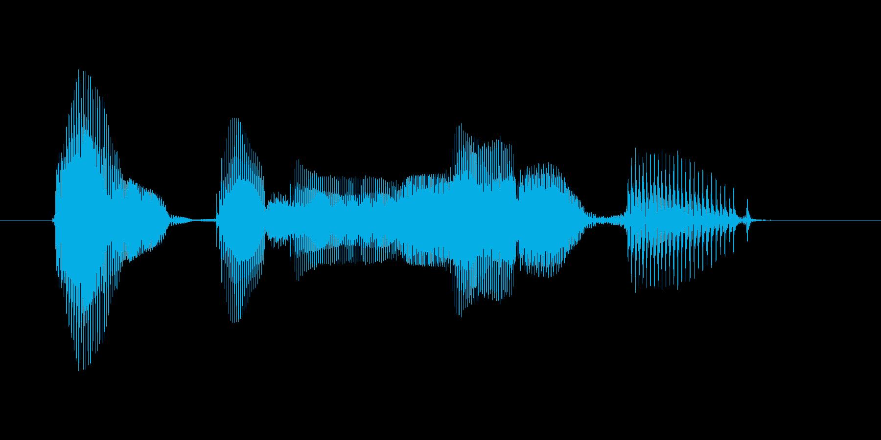 エントリーナンバーの再生済みの波形