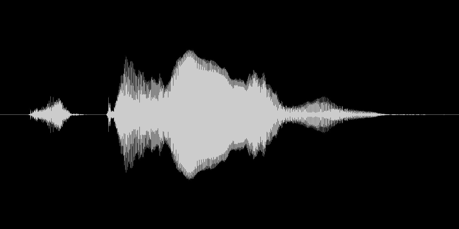 【ボイスSE】ずきゅーん!の未再生の波形