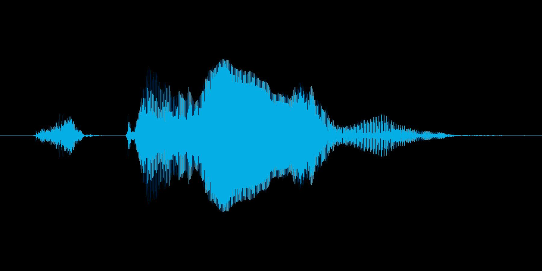 【ボイスSE】ずきゅーん!の再生済みの波形