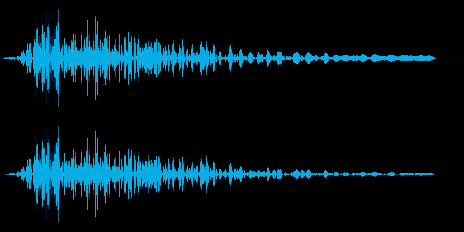 ブォー(巨人の低いため息)の再生済みの波形