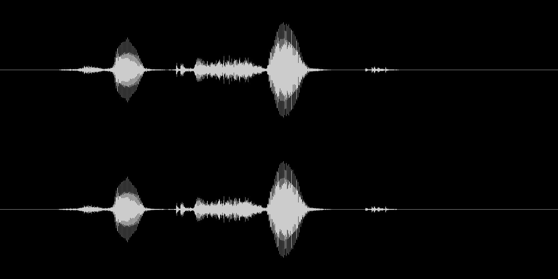 サクサクの未再生の波形