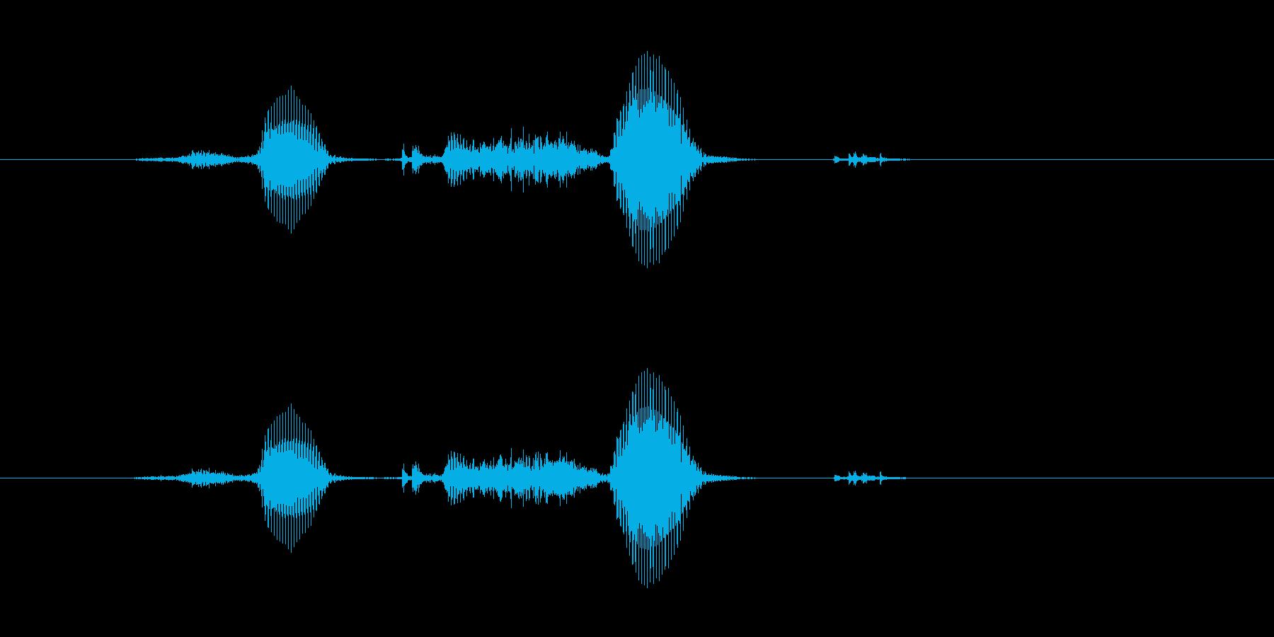 サクサクの再生済みの波形