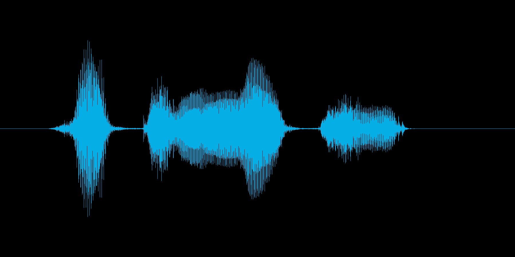 8月(8月・八月)の再生済みの波形