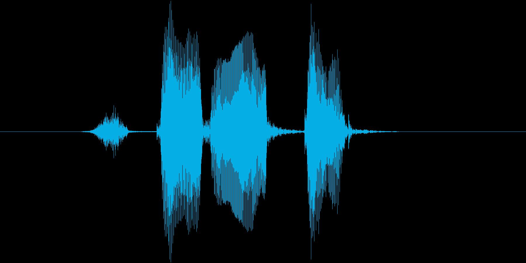 ストレートの再生済みの波形