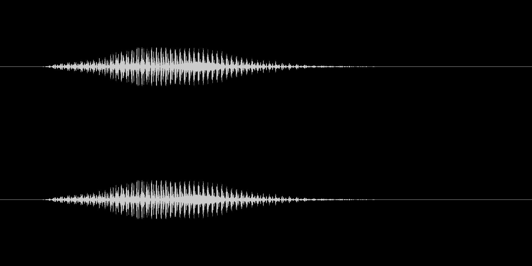 ロンの未再生の波形