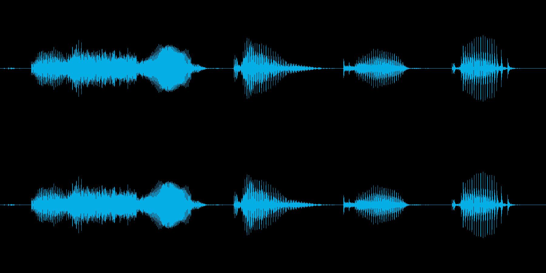 【日数・経過】1週間経過の再生済みの波形