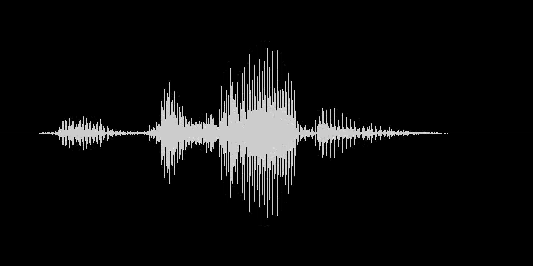 ビッグサーバーの未再生の波形