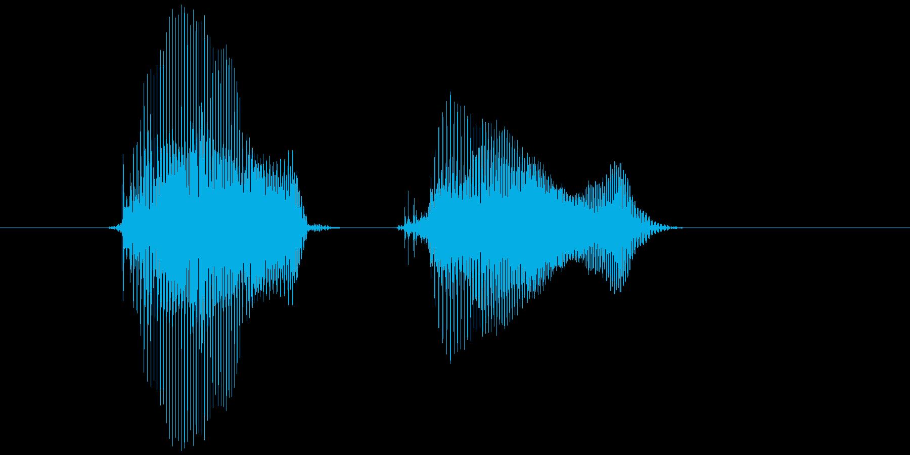 「ぷん!ぷん!」の再生済みの波形