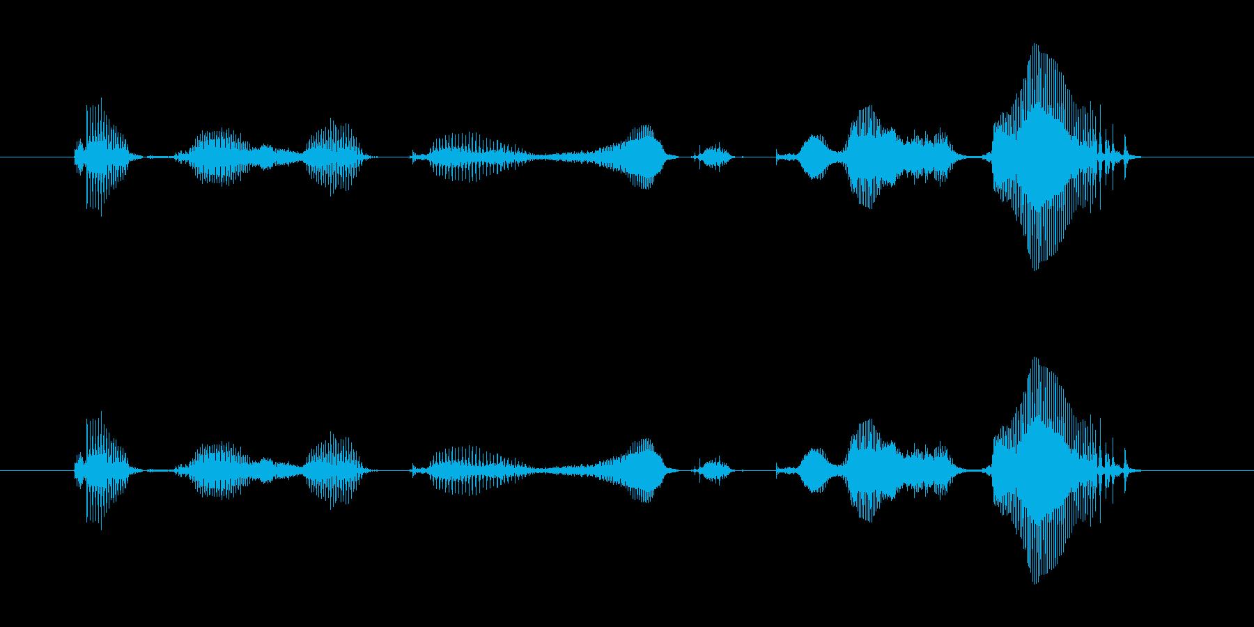 【ラジオ・パーソナリティ・ED】明坂ひ…の再生済みの波形