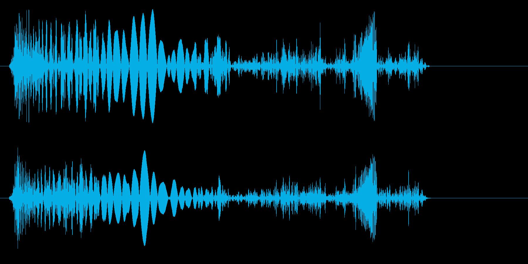 プチュリッ(軟体物質がつぶれるような音)の再生済みの波形