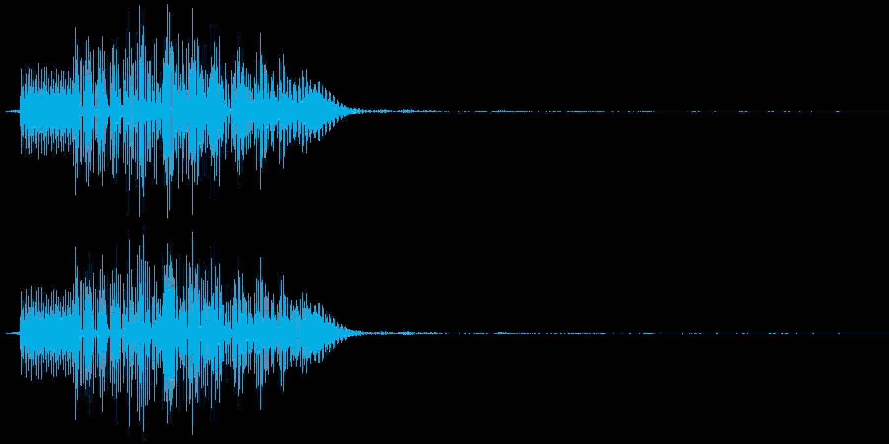 ポロリ(決定、ゲーム)の再生済みの波形