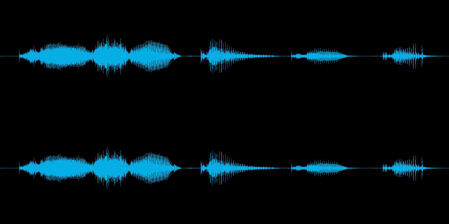【日数・経過】9週間経過の再生済みの波形