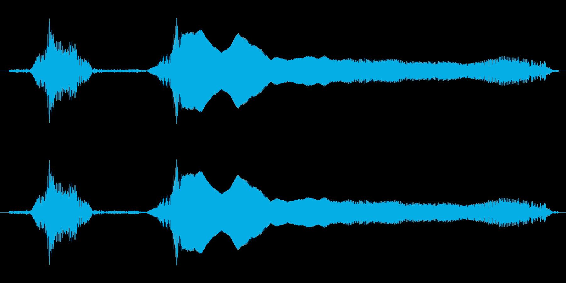 ひゃっほーの再生済みの波形