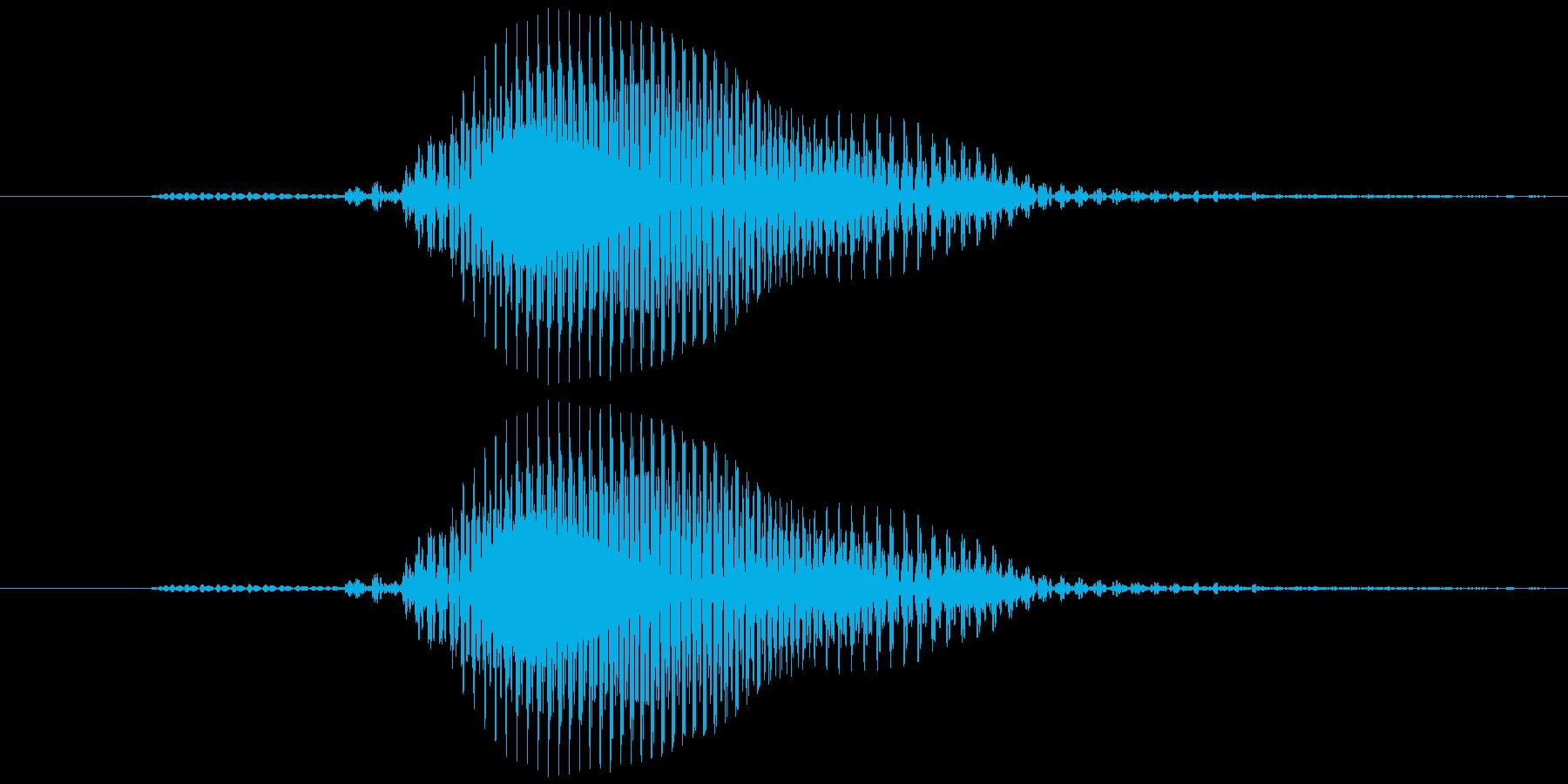 【数字】5(ご)の再生済みの波形