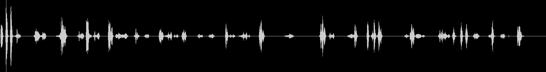 スズメの鳴き声(至近距離)の未再生の波形