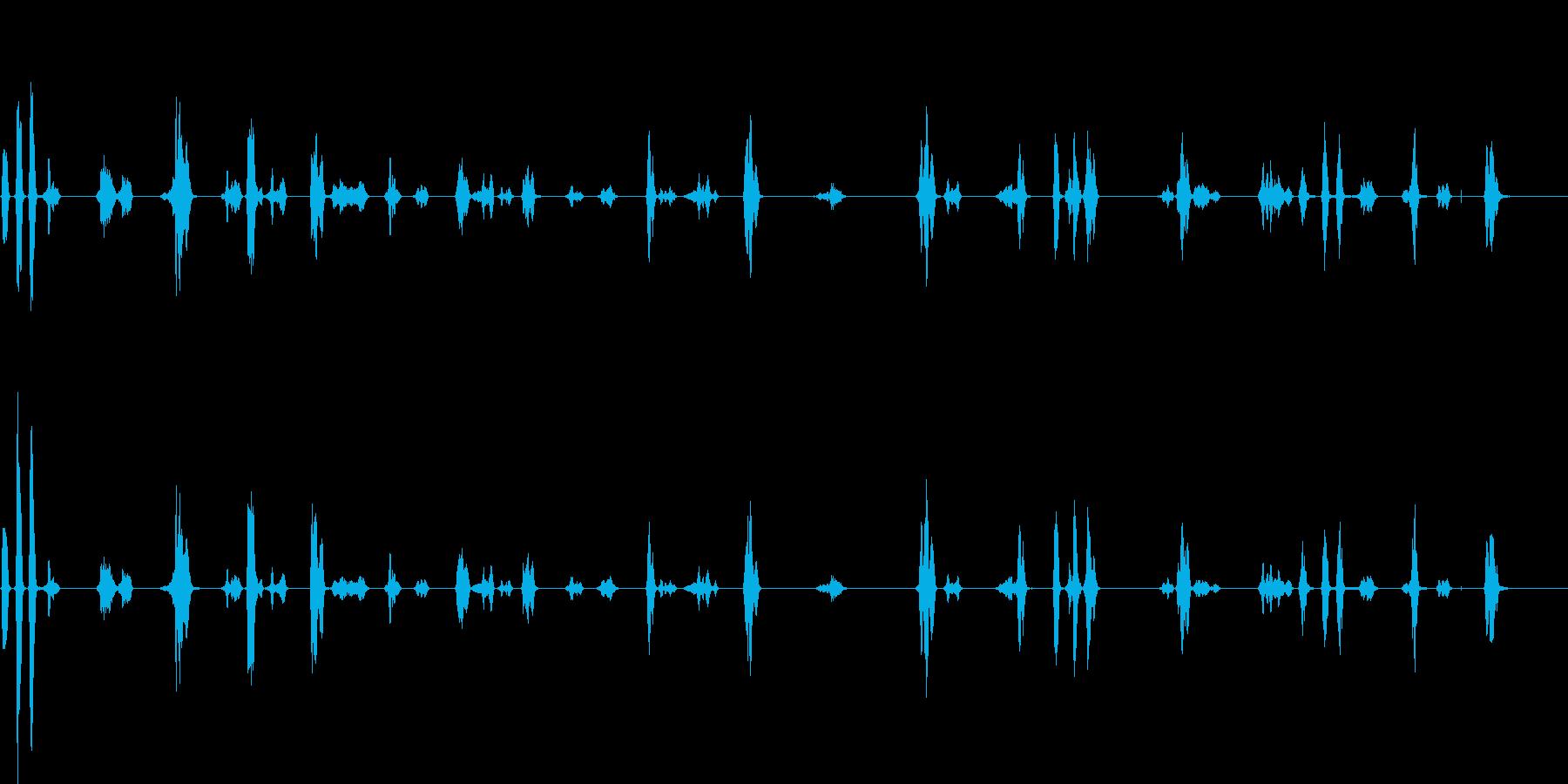 スズメの鳴き声(至近距離)の再生済みの波形