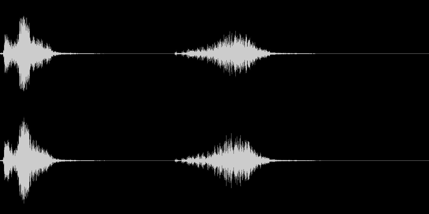 カンムリサケビドリの鳴き声の未再生の波形