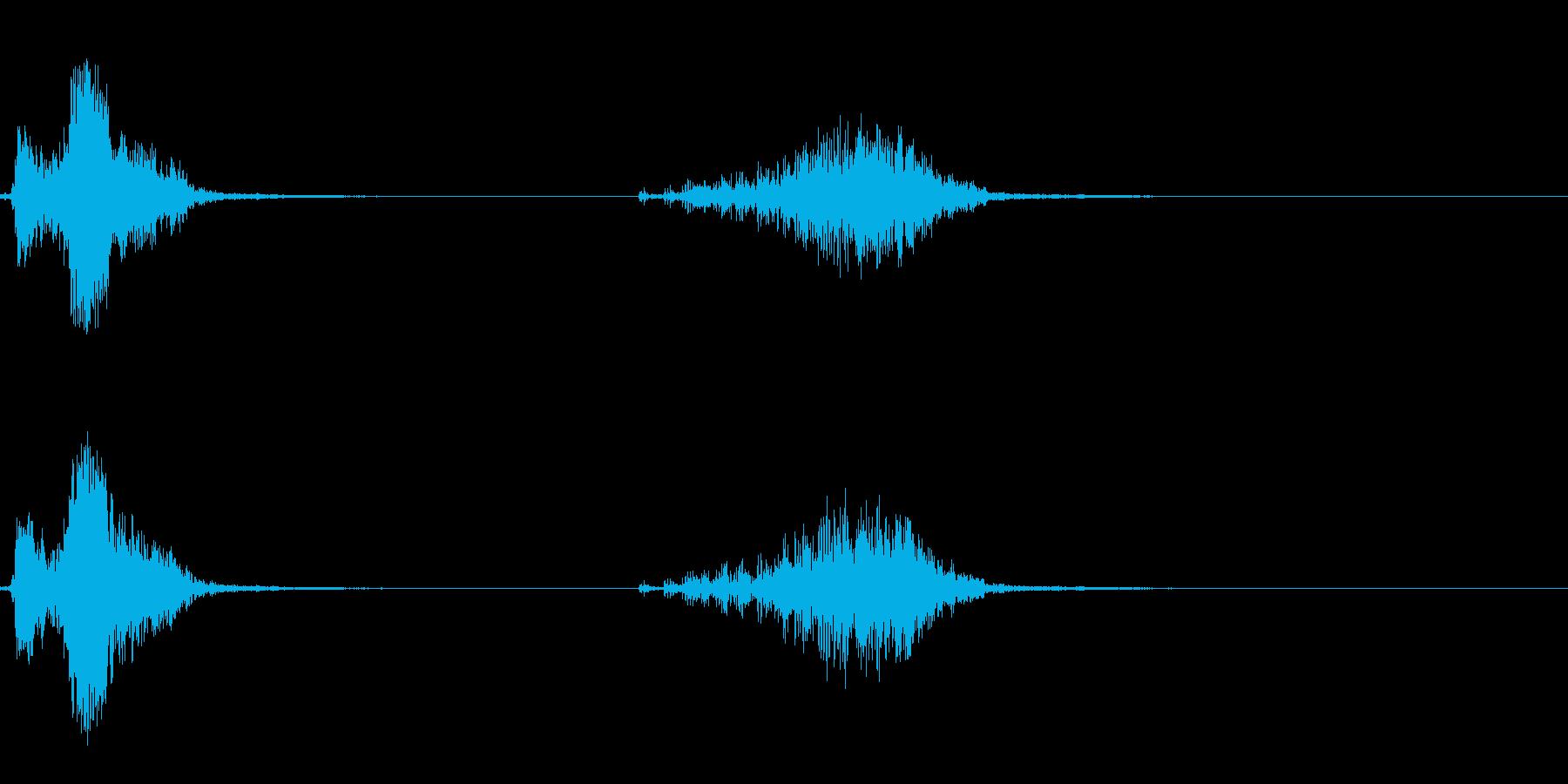 カンムリサケビドリの鳴き声の再生済みの波形