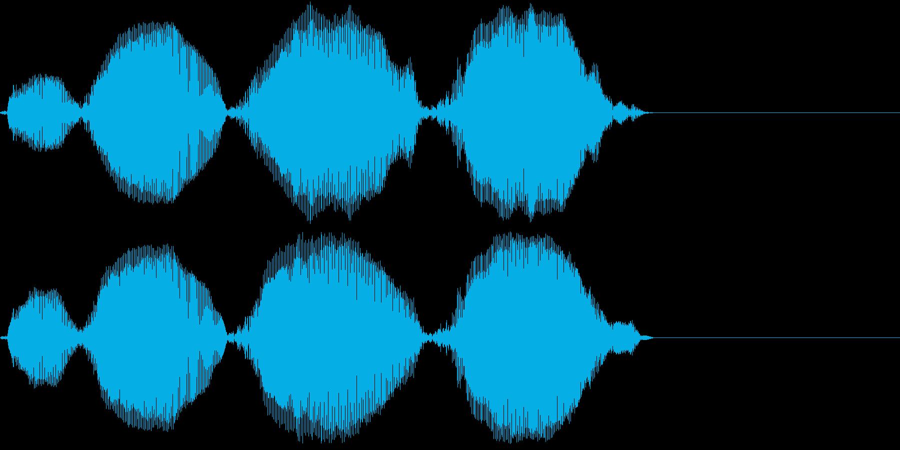 Animal リスザル風の鳴き声 小型猿の再生済みの波形