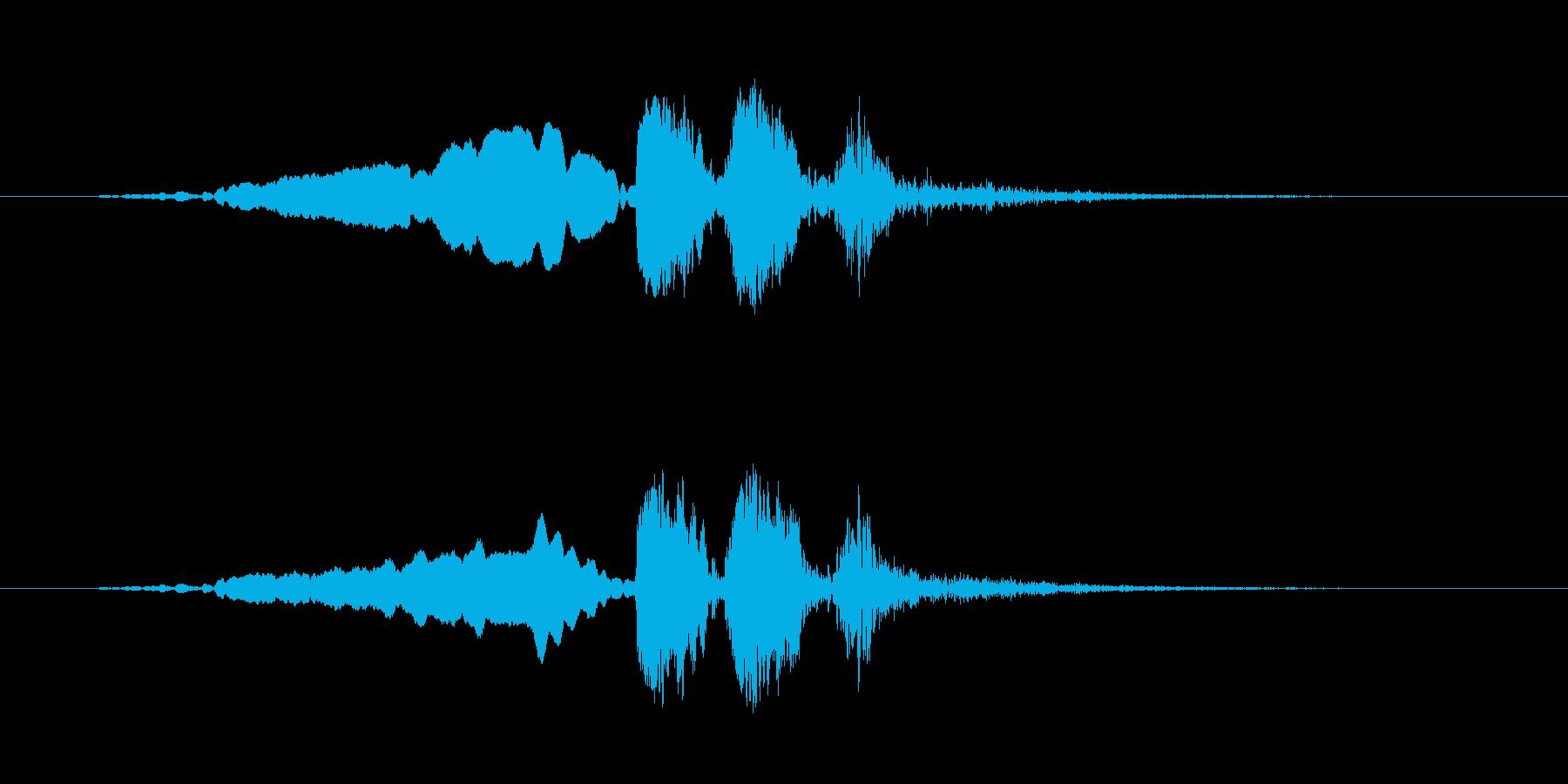 【ウグイス 合成01-2】の再生済みの波形