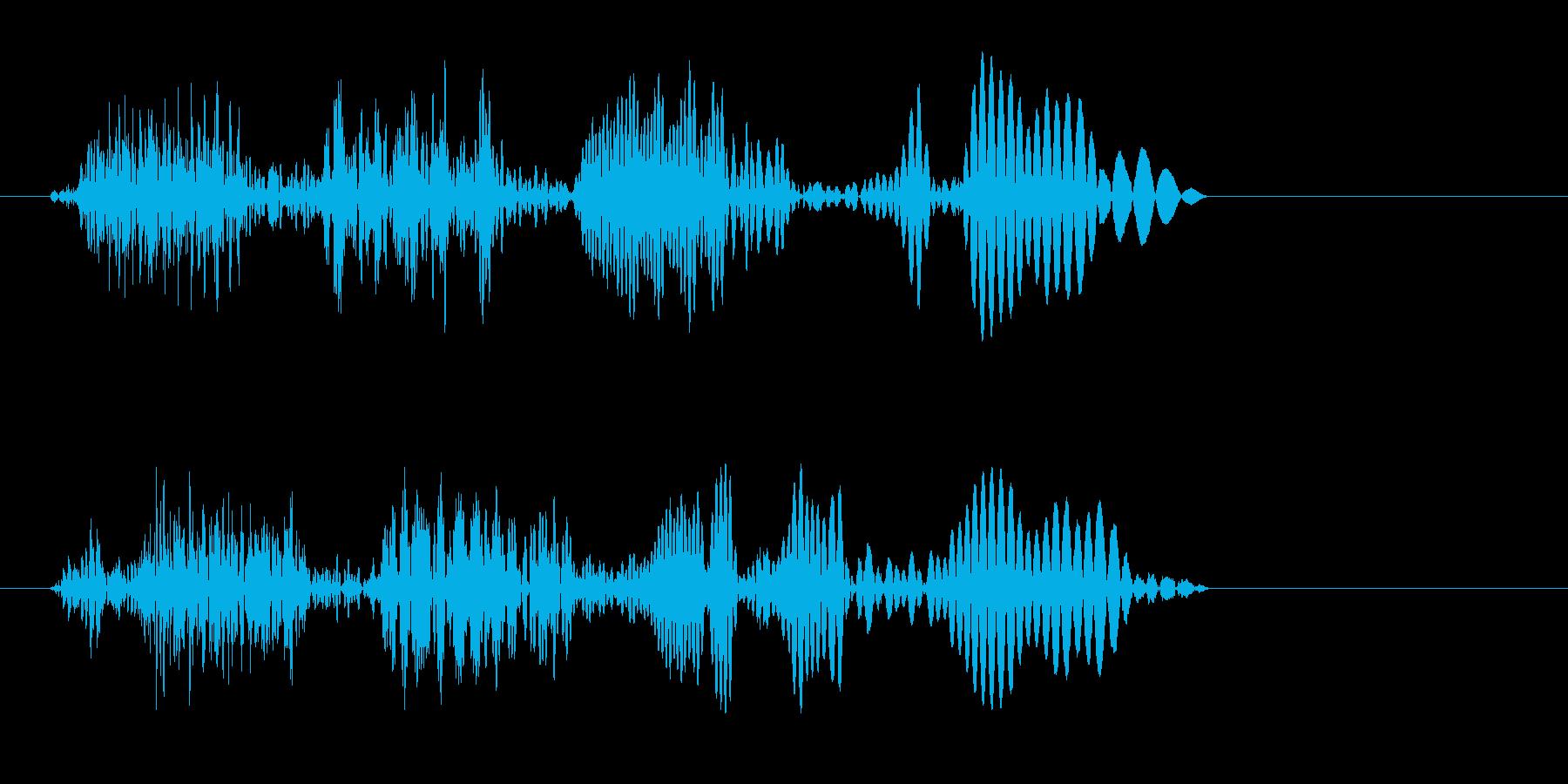 プワァッ(切り替えシーン向きの音)の再生済みの波形