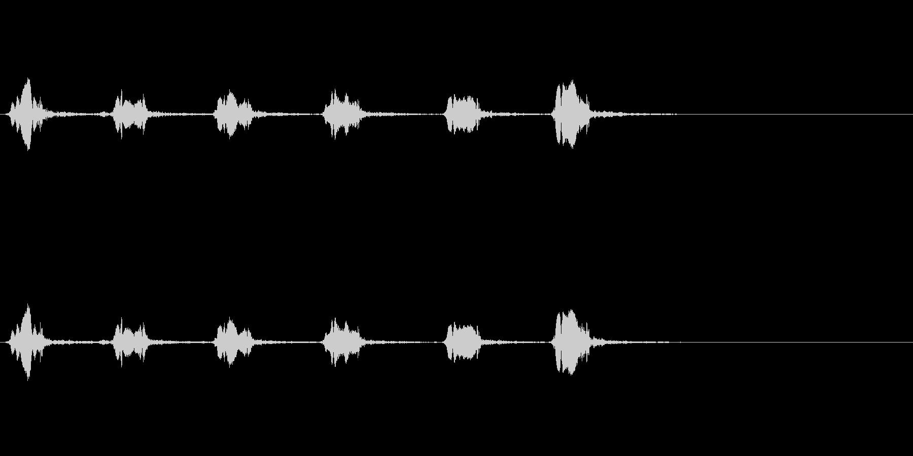 カラスの鳴き声(一匹、飛びながら)の未再生の波形