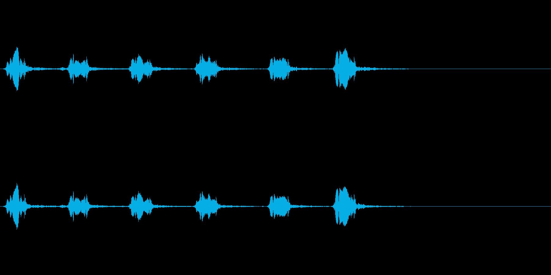 カラスの鳴き声(一匹、飛びながら)の再生済みの波形