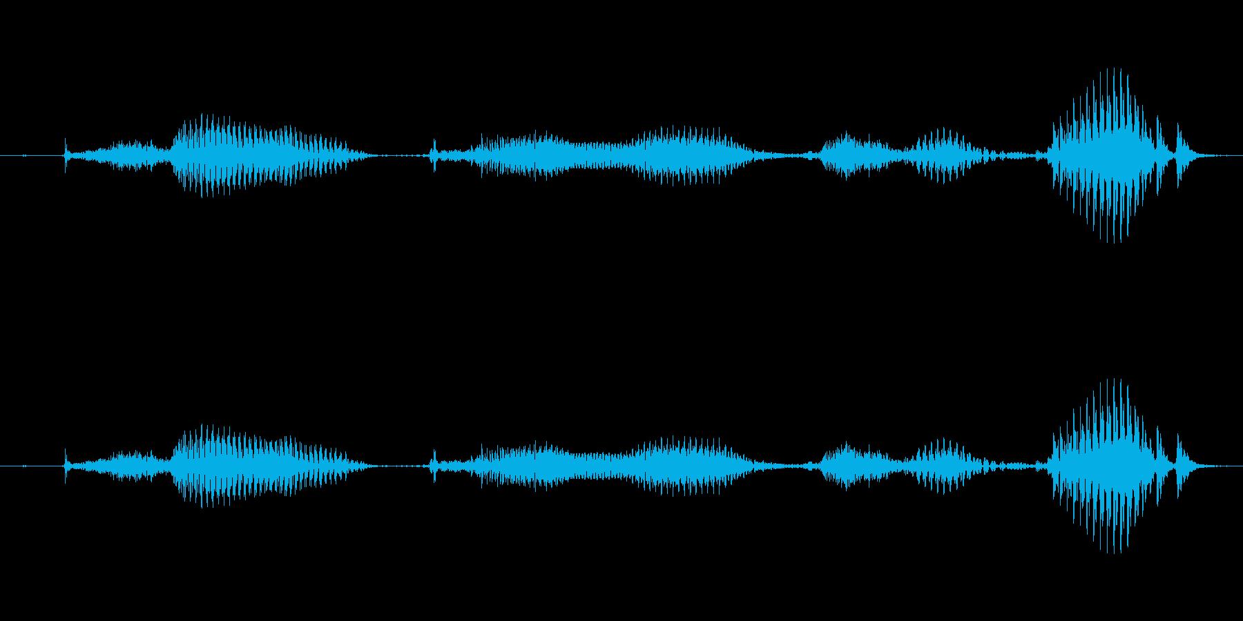 【日数・後】9ヶ月後の再生済みの波形