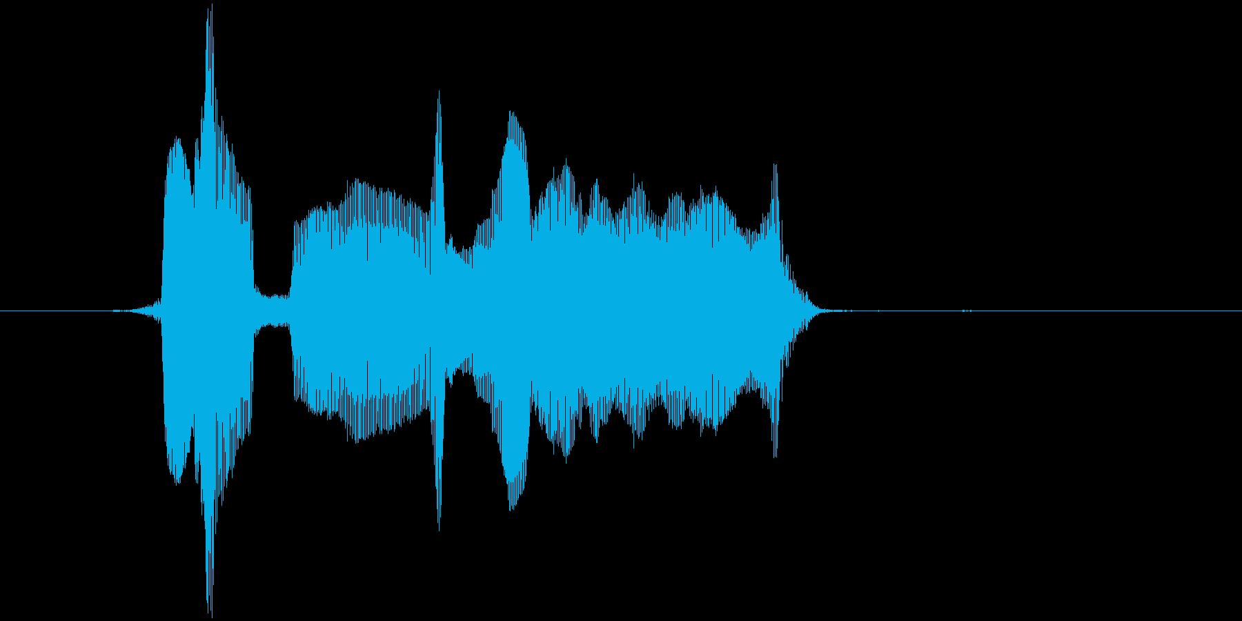 アモーレ~!の再生済みの波形