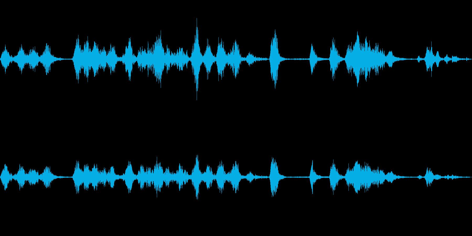 犬の喧嘩の再生済みの波形