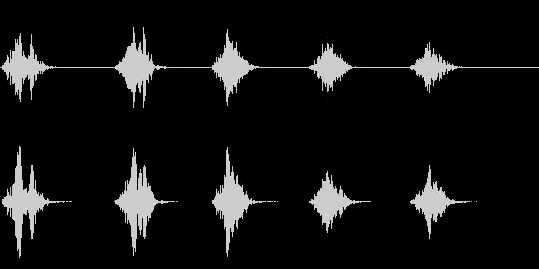 ライオンの鳴き声(グルグル唸る)の未再生の波形