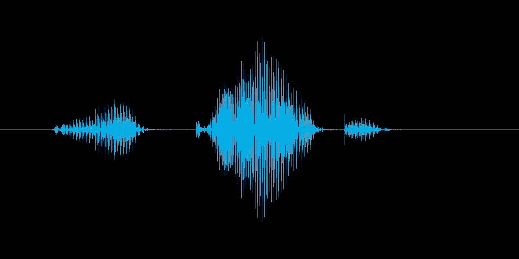 ノックアウトの再生済みの波形