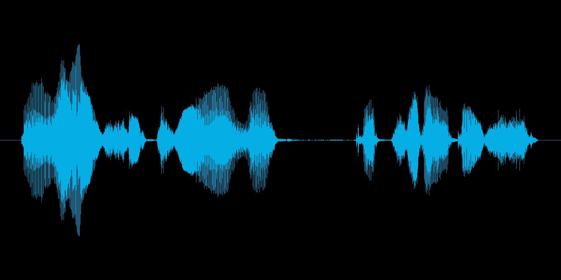 利用説明は、こちらですの再生済みの波形