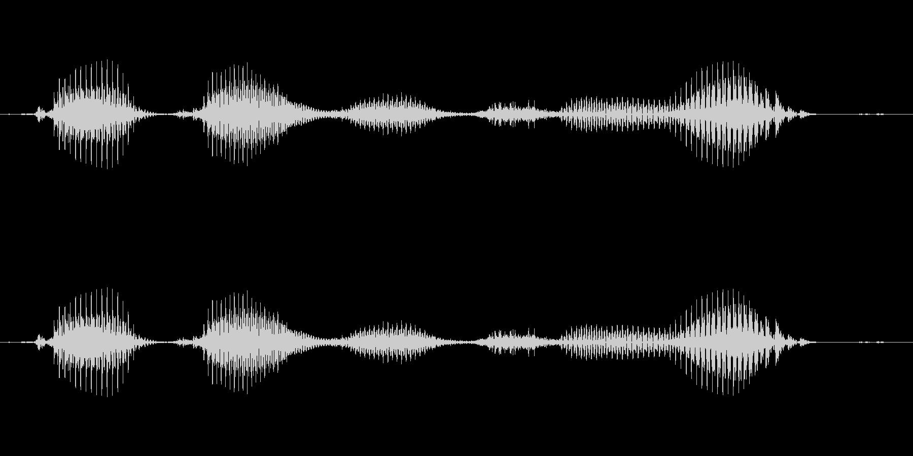 【日数・後】5ヶ月後の未再生の波形