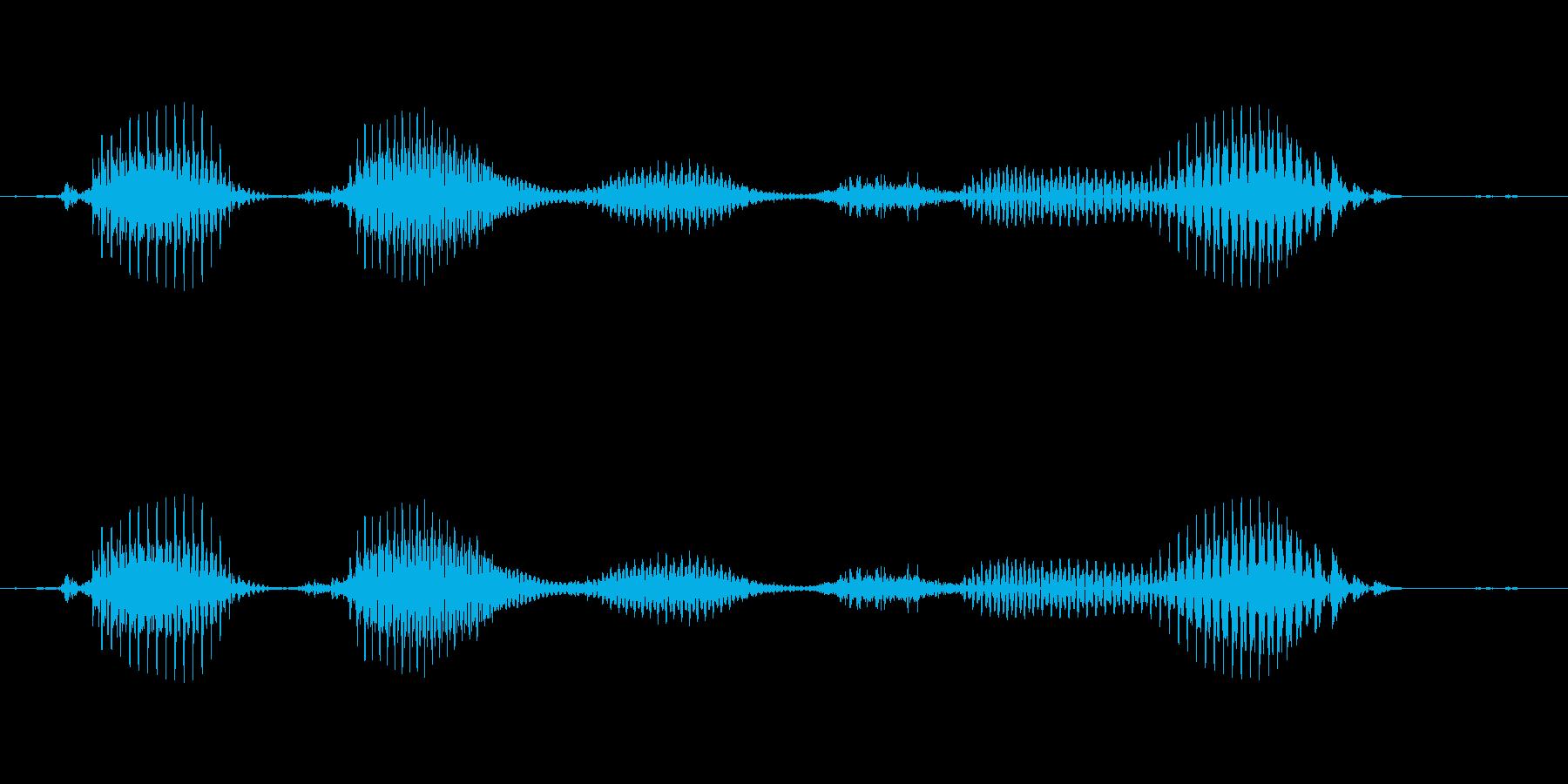 【日数・後】5ヶ月後の再生済みの波形