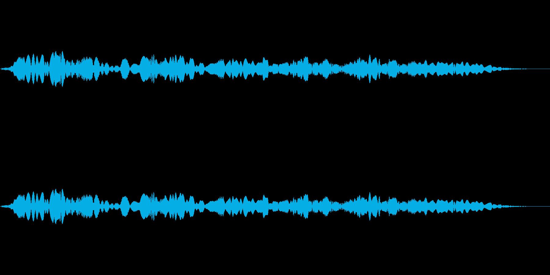 (口笛)の再生済みの波形