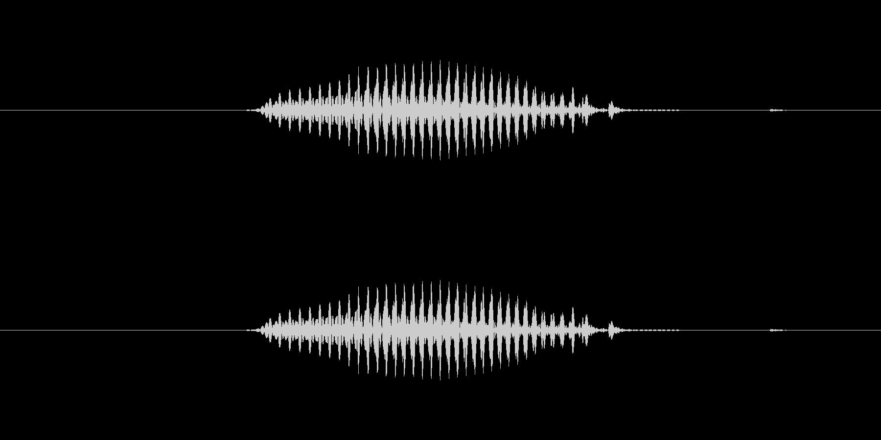 【干支】巳の未再生の波形