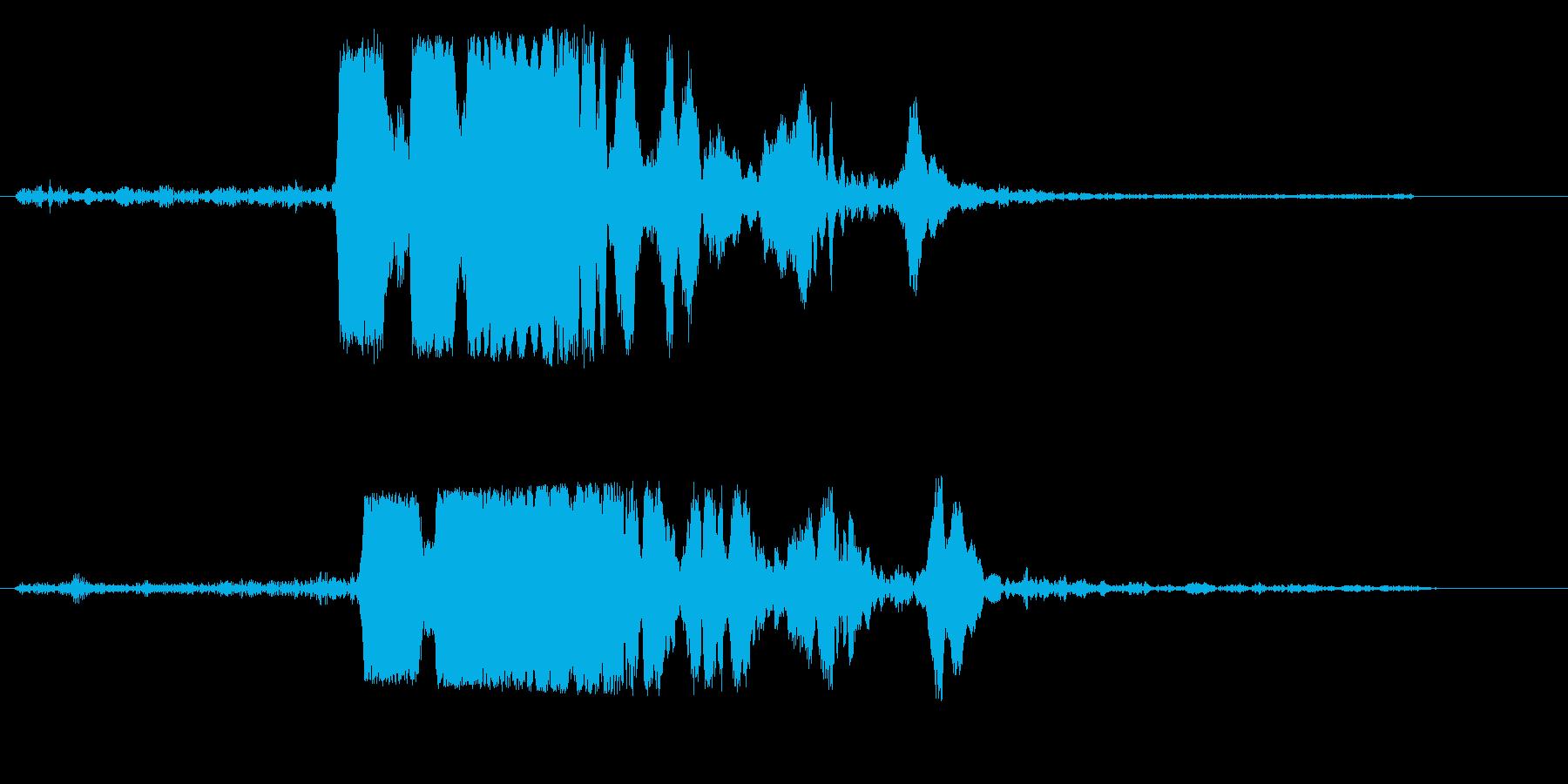 キキーッ(自動車の急ブレーキ音)の再生済みの波形