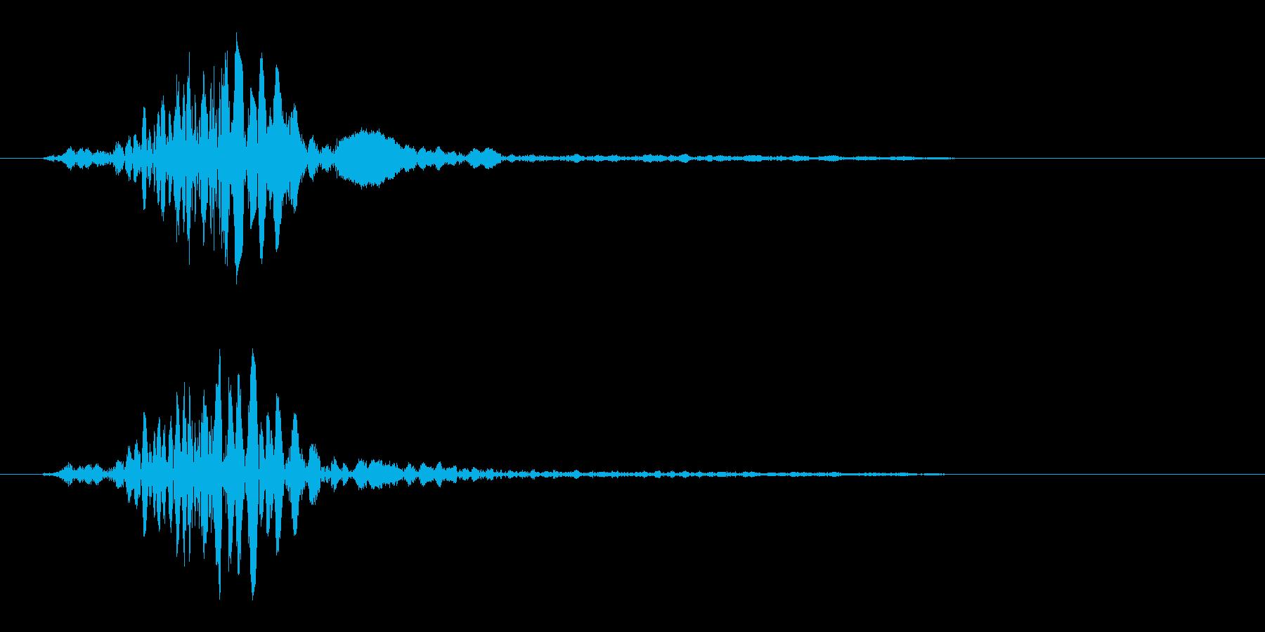パシッ(多方面で利用可能なシンプルな音)の再生済みの波形