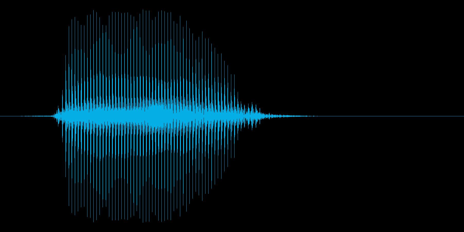 子供や犬用のおもちゃの音(ぷっ)の再生済みの波形