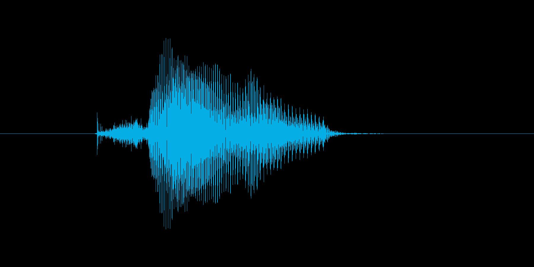 今日(きょう)の再生済みの波形