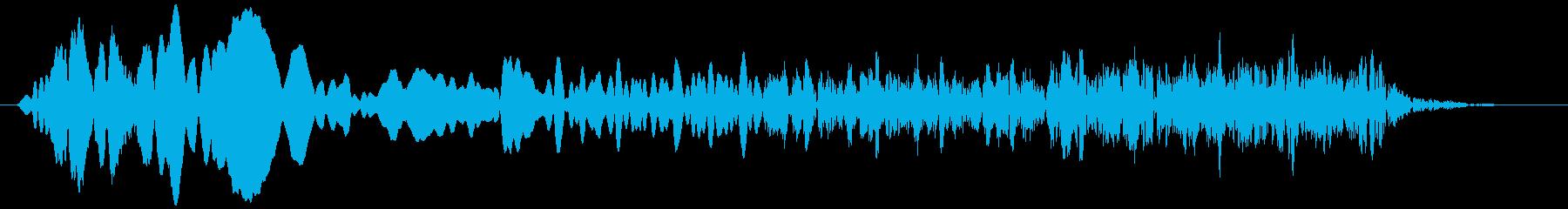 トンビ(トビ、鳶) ピーヒョロロロ 短めの再生済みの波形