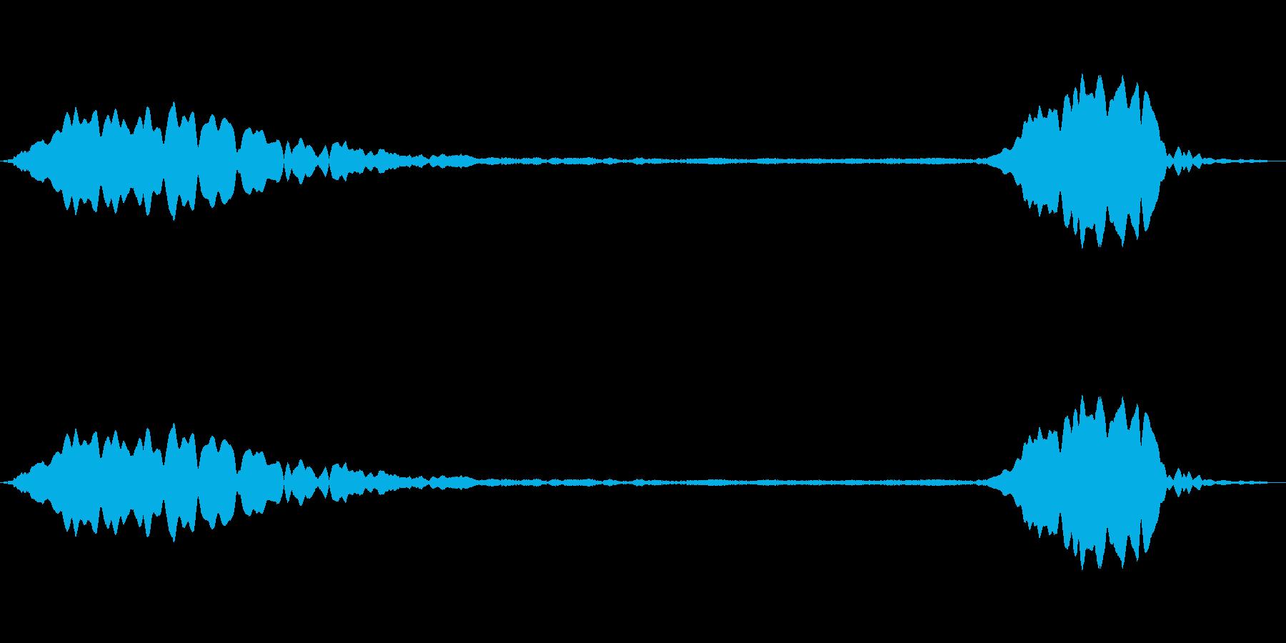ピューピッ(ホイッスルの音)の再生済みの波形