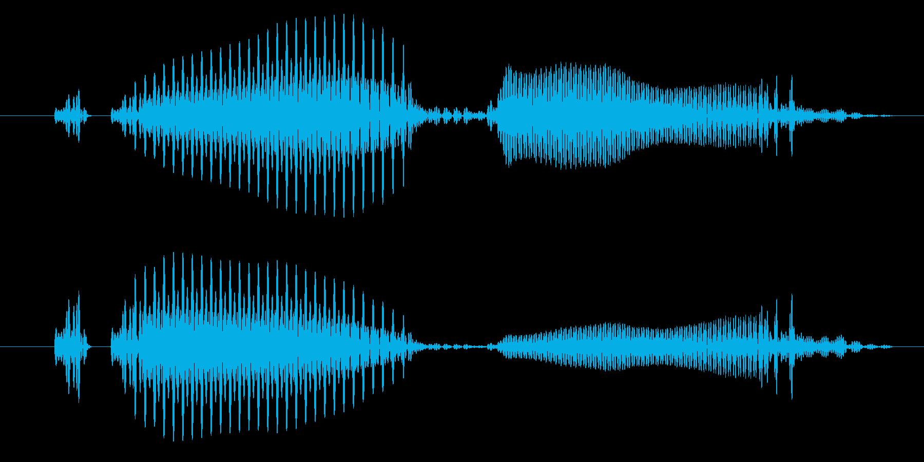 「ウホっ」コミカルで間抜けな演出に最適!の再生済みの波形