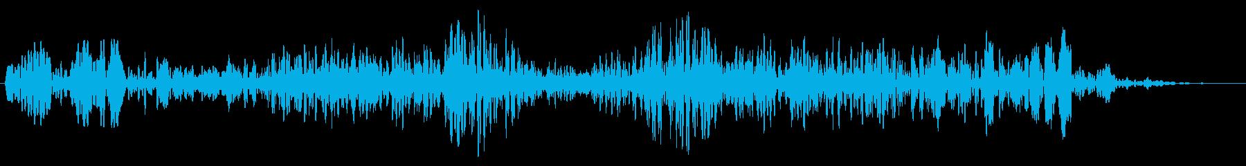 ゴーァシュアーン(通過音)の再生済みの波形