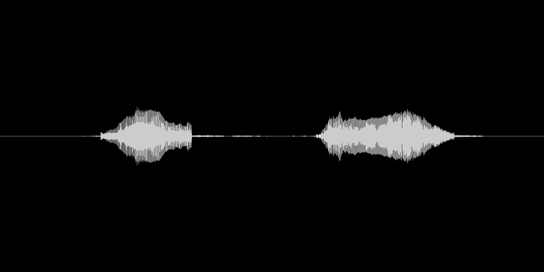 猫のミャーウみャーーウの未再生の波形