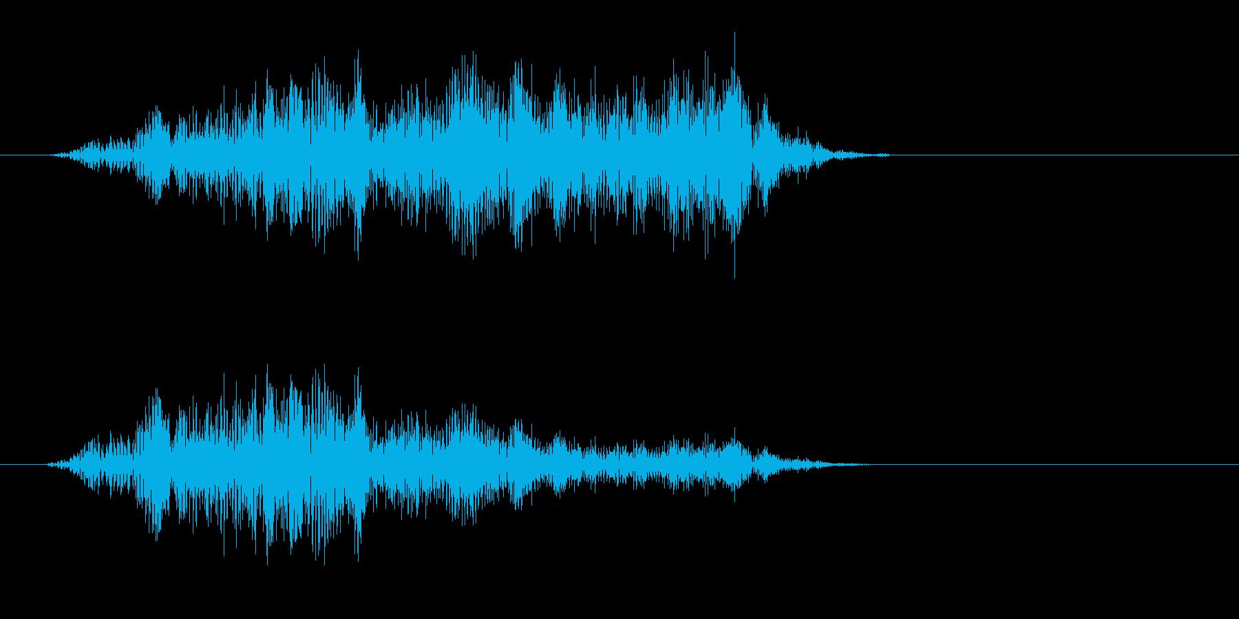 キキ(弦を擦ったような音)の再生済みの波形