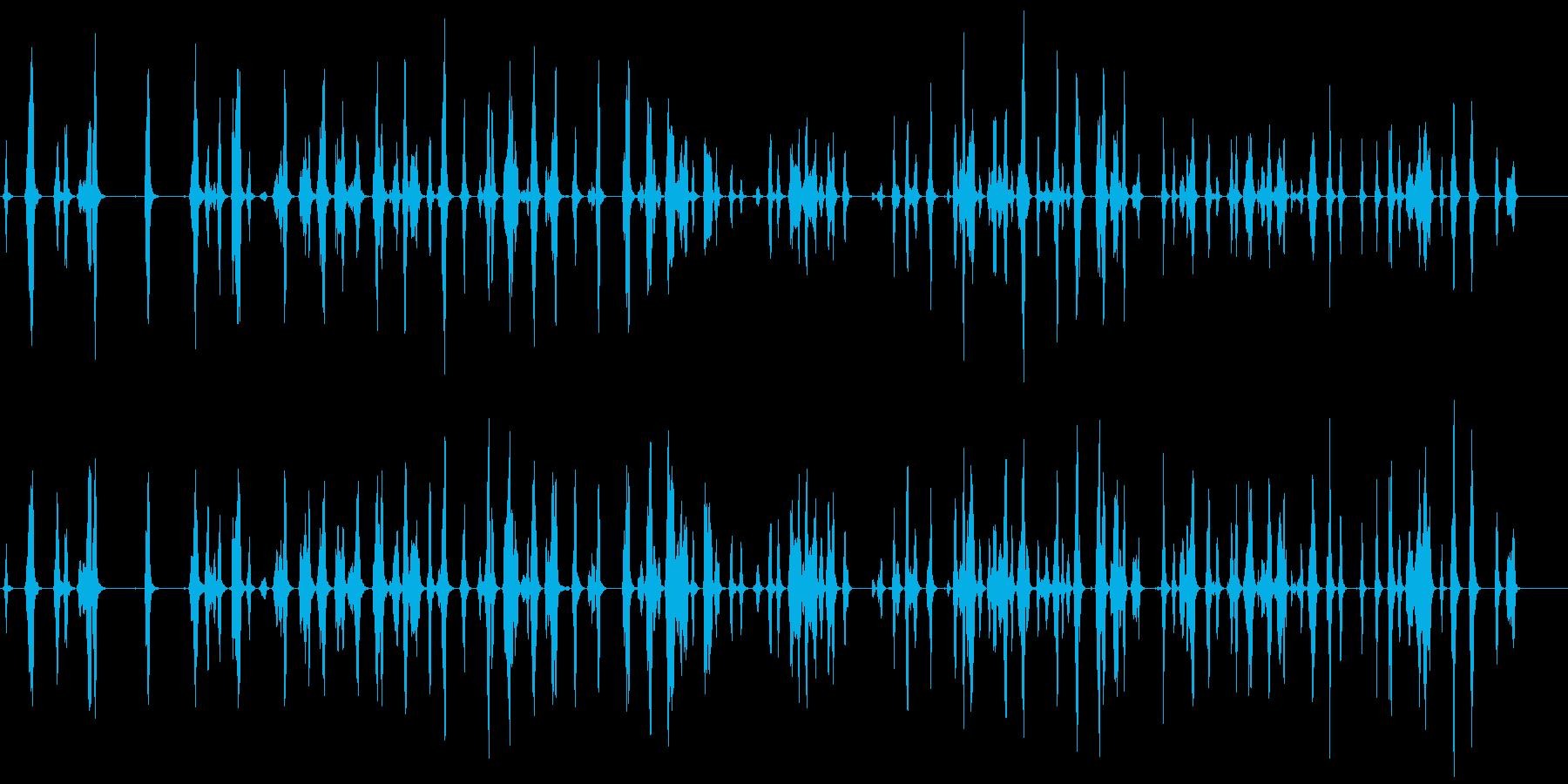 ピッピピッピ.。小鳥の鳴き声(複数・低)の再生済みの波形